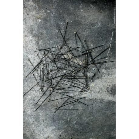 Entomology Pins 100