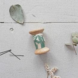 BIAS - Canopy Cactus
